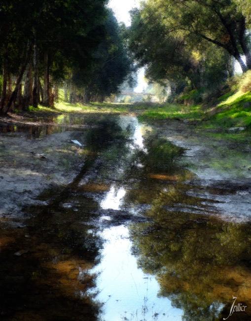 Caminos de mi tierra